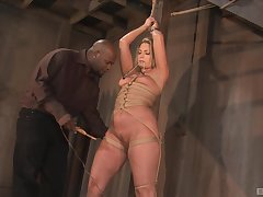 Secured Flower Tucci gets will not hear of pussy pleased in someone's skin stranger's basement
